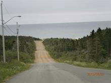 Lot for sale in Les Îles-de-la-Madeleine, Gaspésie/Îles-de-la-Madeleine, Route  199, 14182930 - Centris