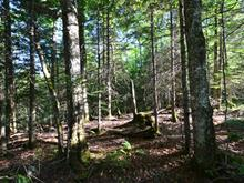 Land for sale in Milan, Estrie, Chemin de la Yard, 19381513 - Centris