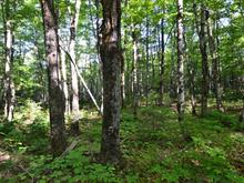 Land for sale in Milan, Estrie, Chemin de la Yard, 10775702 - Centris