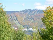 Terrain à vendre à Mont-Tremblant, Laurentides, Chemin du Pain-de-Sucre, 10673049 - Centris