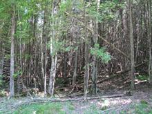 Lot for sale in Ogden, Estrie, Chemin  Descente 2, 28277428 - Centris