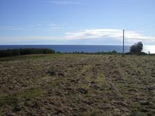 Lot for sale in Percé, Gaspésie/Îles-de-la-Madeleine, Route  132 Est, 14198462 - Centris