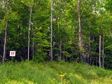 Lot for sale in Potton, Estrie, 17, Chemin  Boright, 22804767 - Centris