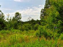 Lot for sale in Potton, Estrie, 9, Chemin  Boright, 14365891 - Centris