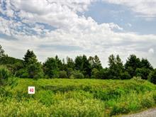 Lot for sale in Potton, Estrie, 40, Chemin  Boright, 23470298 - Centris