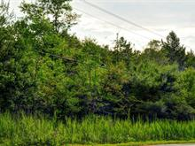 Lot for sale in Potton, Estrie, B, Chemin de Vale Perkins, 9431966 - Centris