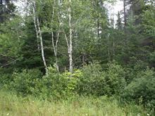 Lot for sale in Mont-Laurier, Laurentides, Chemin du 8e-Rang Nord, 19561523 - Centris