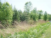 Terre à vendre à Rivière-Beaudette, Montérégie, Chemin de la Frontiere, 15419822 - Centris