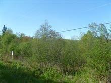 Terrain à vendre à Saint-Gabriel-de-Brandon, Lanaudière, Chemin du Mont-de-Lanaudière, 14639875 - Centris