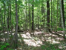 Terre à vendre à Sainte-Sophie, Laurentides, Chemin de l'Achigan Ouest, 14090236 - Centris