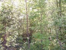 Lot for sale in Cap-Saint-Ignace, Chaudière-Appalaches, Route  Bellavance, 12676985 - Centris
