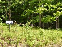 Terrain à vendre à Lac-Brome, Montérégie, 3, Rue  John-Mitchell, 22144183 - Centris