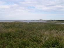 Terrain à vendre à Les Îles-de-la-Madeleine, Gaspésie/Îles-de-la-Madeleine, Chemin de la Pointe-à-Marichite, 11159176 - Centris