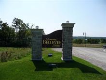 Terrain à vendre à Pontiac, Outaouais, 2, Chemin  Seliner, 16689899 - Centris