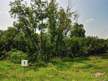 Lot for sale in Potton, Estrie, 1, Chemin  Boright, 23085657 - Centris