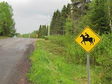 Terrain à vendre à Larouche, Saguenay/Lac-Saint-Jean, 3, Chemin du Ruisseau, 13711320 - Centris