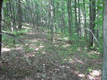 Lot for sale in Saint-Gabriel-de-Valcartier, Capitale-Nationale, Chemin  Redmond, 18399480 - Centris