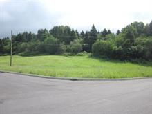 Lot for sale in Canton Tremblay (Saguenay), Saguenay/Lac-Saint-Jean, 14, Rue  Victor-Tremblay, 10300711 - Centris