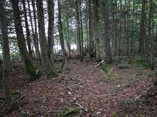 Lot for sale in Nominingue, Laurentides, Montée  Vachet, 17005788 - Centris