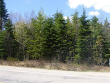 Terrain à vendre à Saint-Émile-de-Suffolk, Outaouais, Route  323, 18154418 - Centris