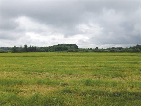 Terre à vendre à Durham-Sud, Centre-du-Québec, 10e Rang, 10268879 - Centris