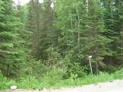 Lot for sale in Gallichan, Abitibi-Témiscamingue, 849, Chemin  Lirette, 14063798 - Centris