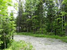 Lot for sale in Stratford, Estrie, Chemin du Soleil-Couchant, 19387056 - Centris