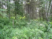 Lot for sale in Ferme-Neuve, Laurentides, Chemin  Nibi, 20930653 - Centris
