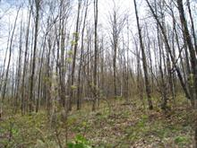 Lot for sale in Ferme-Neuve, Laurentides, Chemin  Nibi, 10452976 - Centris