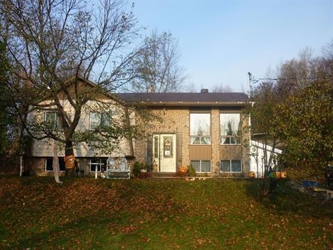 House for sale in La Minerve, Laurentides, 53, Chemin de La Minerve, 16903029 - Centris