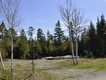Lot for sale in Saint-Marcel, Chaudière-Appalaches, 21, Chemin du Lac-Fontaine-Claire Sud, 19519659 - Centris