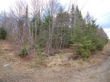Lot for sale in Val-David, Laurentides, Rue  Duguay, 12210934 - Centris