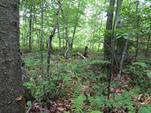 Lot for sale in Gore, Laurentides, Chemin des Aigles, 17091228 - Centris