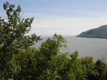 Lot for sale in Baie-Saint-Paul, Capitale-Nationale, Chemin de l'Amanda, 11175721 - Centris