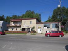 Bâtisse commerciale à vendre à Rivière-Rouge, Laurentides, 97 - 109, Rue l'Annonciation Nord, 23737635 - Centris