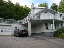 House for sale in Mont-Laurier, Laurentides, 3601, Chemin  Bellevue, 21010706 - Centris