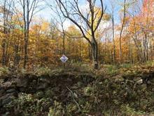 Lot for sale in Bromont, Montérégie, Rue des Lauriers, 16715169 - Centris