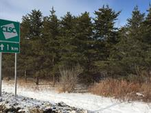 Lot for sale in Donnacona, Capitale-Nationale, Route  138, 17780707 - Centris