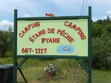Bâtisse commerciale à vendre à Arundel, Laurentides, 48, Chemin de la Montagne, 10818586 - Centris