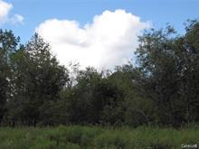 Land for sale in Rivière-Héva, Abitibi-Témiscamingue, Route  Saint-Paul Nord, 22433561 - Centris