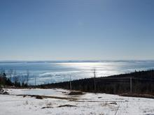 Lot for sale in La Malbaie, Capitale-Nationale, Chemin  William-Tremblay, 10367622 - Centris