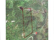 Terrain à vendre à Mulgrave-et-Derry, Outaouais, Chemin de la Savane Sud, 25186442 - Centris