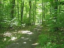 Terrain à vendre à Lac-Supérieur, Laurentides, Chemin des Rosiers, 26069352 - Centris