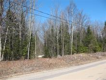 Lot for sale in Saint-Aimé-du-Lac-des-Îles, Laurentides, Chemin  Lauzon, 27768852 - Centris
