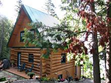 Maison à vendre à Ville-Marie, Abitibi-Témiscamingue, 26, Chemin  Bellevue, 17273709 - Centris