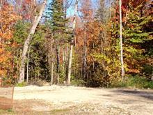 Terrain à vendre à La Pêche, Outaouais, 40, Chemin de la Chapelle, 20081825 - Centris