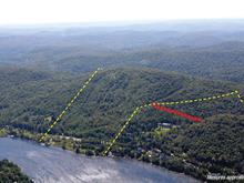 Terre à vendre à Sainte-Agathe-des-Monts, Laurentides, Chemin du Lac-des-Sables, 17550734 - Centris