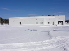 Industrial building for sale in Trois-Rivières, Mauricie, 2695, Rue  Jules-Vachon, 18438375 - Centris