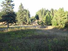 Land for sale in Rivière-Rouge, Laurentides, Chemin du Rapide, 10073607 - Centris