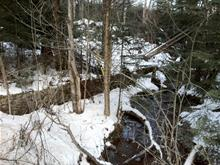 Lot for sale in Lac-Supérieur, Laurentides, 40, Chemin  David, 18627769 - Centris